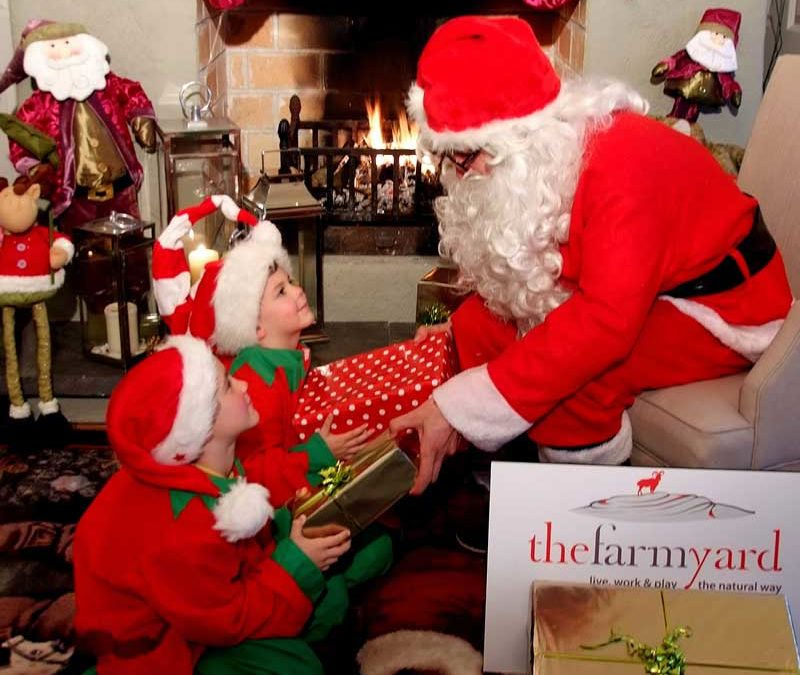 Top Tips to make the most of your visit to the Farmyard this Christmas